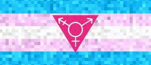 Trans-Flag2