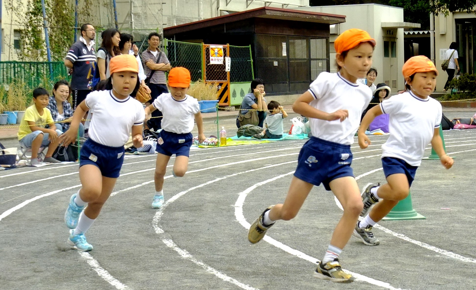 Fitness and health of children through sport: the context