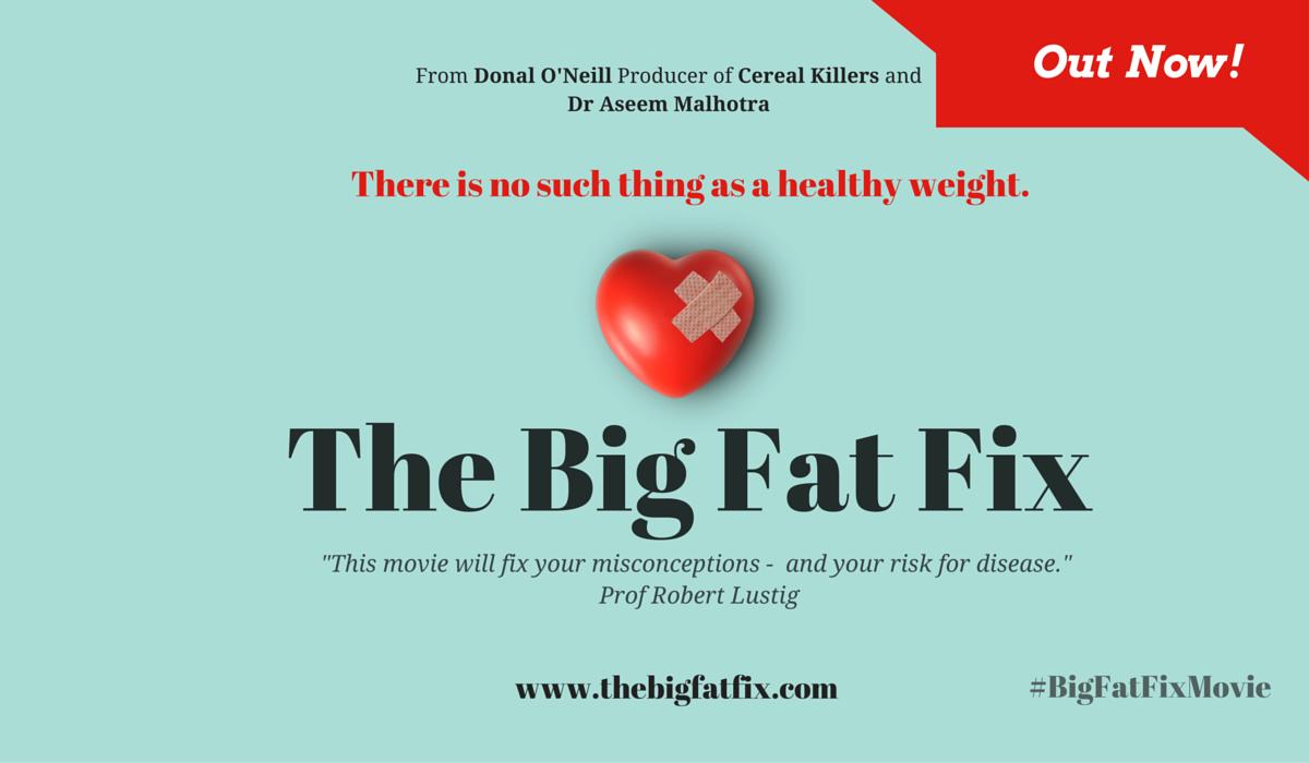 big fat fix poster movie