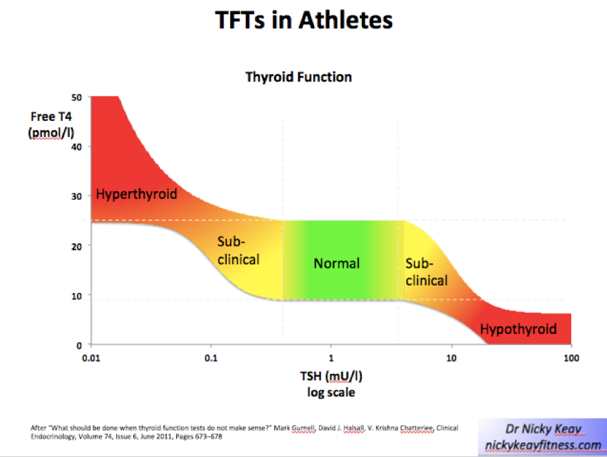 Thyroid Function In Athletes And Dancers Bjsm Blog Social