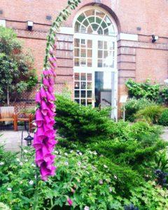 bma_garden