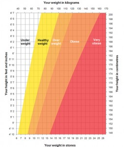 Typical BMI chart