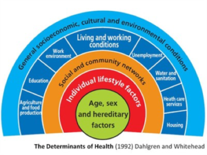 determinants-of-health